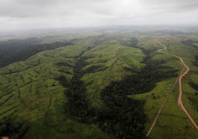 在巴西亚马逊森林中无树地区的鸟瞰图