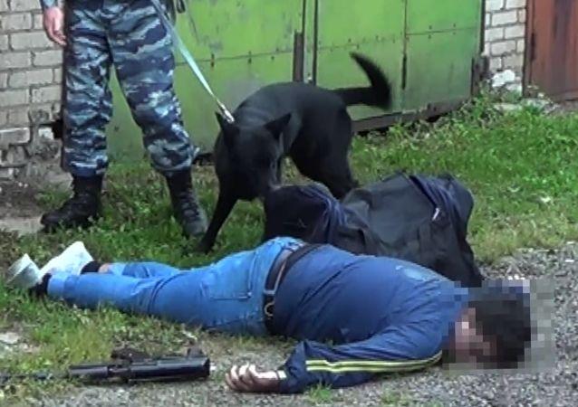 俄联邦安全局称在伏尔加格勒挫败恐袭图谋