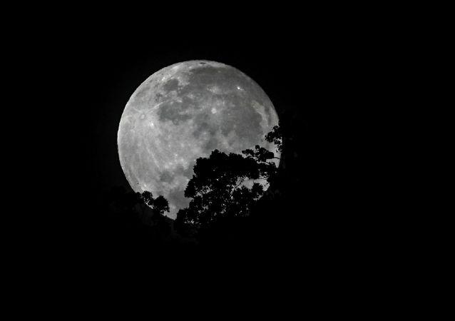 俄专家:和平号的一个模块站曾被建议送去月球以避免坠落