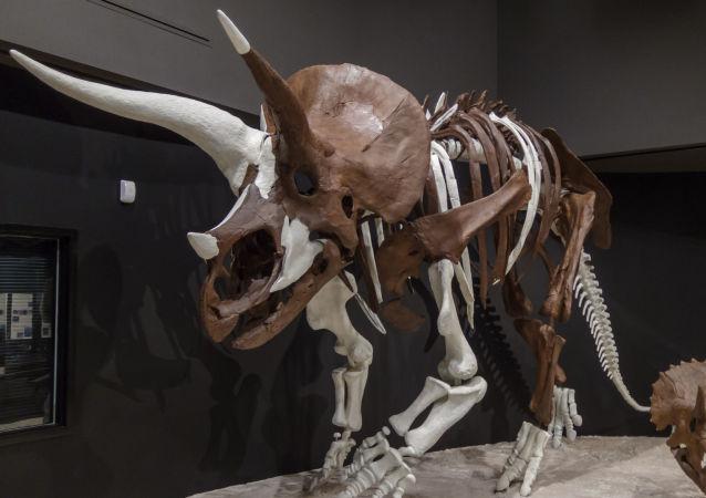 科学家在恐龙化石中首次诊断出恶性肿瘤