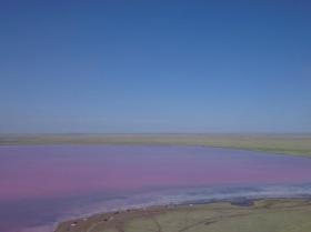 哈萨克斯坦粉湖成网红景点