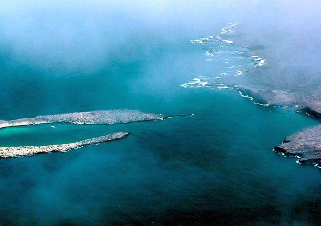 加拉帕戈斯群岛