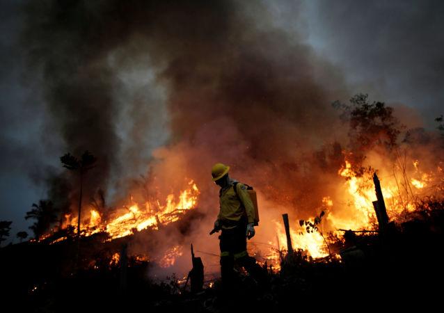 绿色和平:亚马逊地区8月以来的起火数量创下10年之最