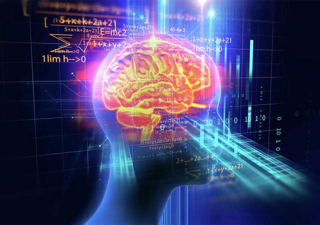 医生介绍哪些食物最易伤害大脑