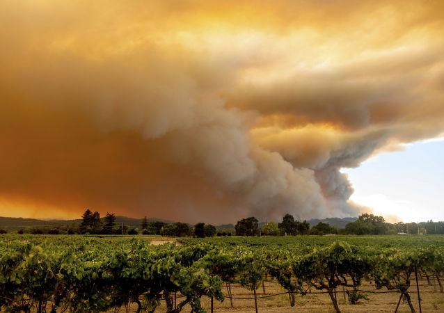 美加利福尼亚州野火