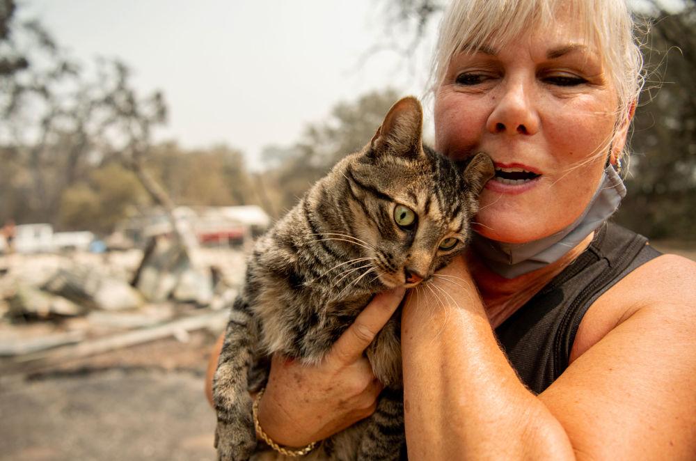 一片焦土:加州火灾后的惨状