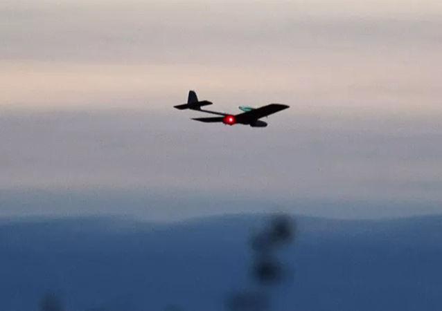 俄防长:俄罗斯反无人机系统性能比外国产品优秀数倍