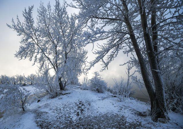 俄罗斯汉特-曼西自治区气温降至零下45度 中小学因此停课