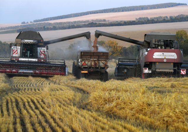 """俄罗斯科学家为农民创造全球首套""""智慧耕作""""系统"""