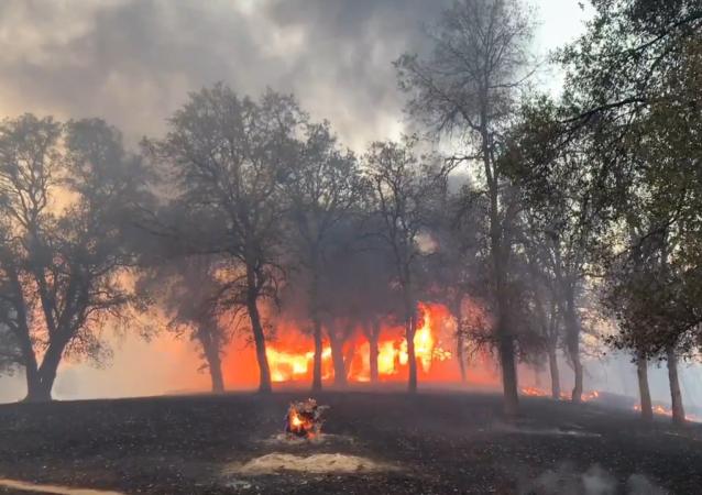 美国加州再遭山火 疏散居民