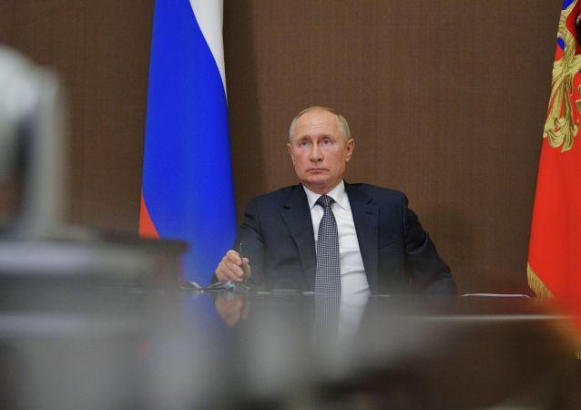 普京:俄木材及其交易登记系统应于明年起试运行