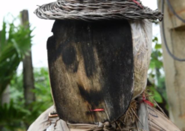 """柬埔寨人用稻草人""""吓跑""""新冠病毒"""