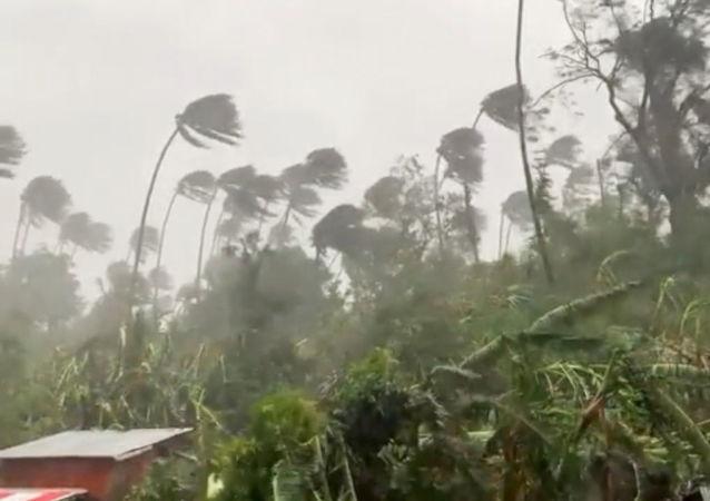 """台风""""舒力基""""已致菲律宾3人死亡 22万人受灾"""
