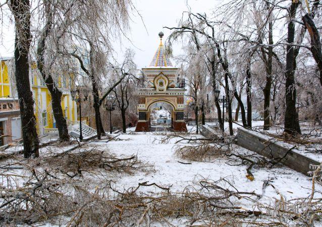 俄滨海边疆区政府估计暴风雪造成的损失达到8000万卢布