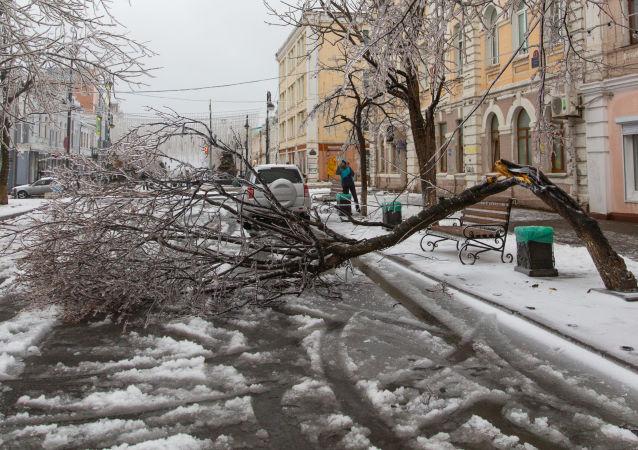 俄符拉迪沃斯托克市超300家机构将参与星期六义务劳动清扫冰雪