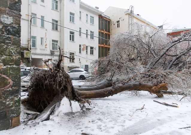 滨海边疆区行政长官:电力系统因遭暴雪袭击损失预计达1.8亿卢布
