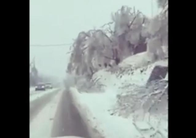滨海边疆区因暴风雪全区进入紧急状态
