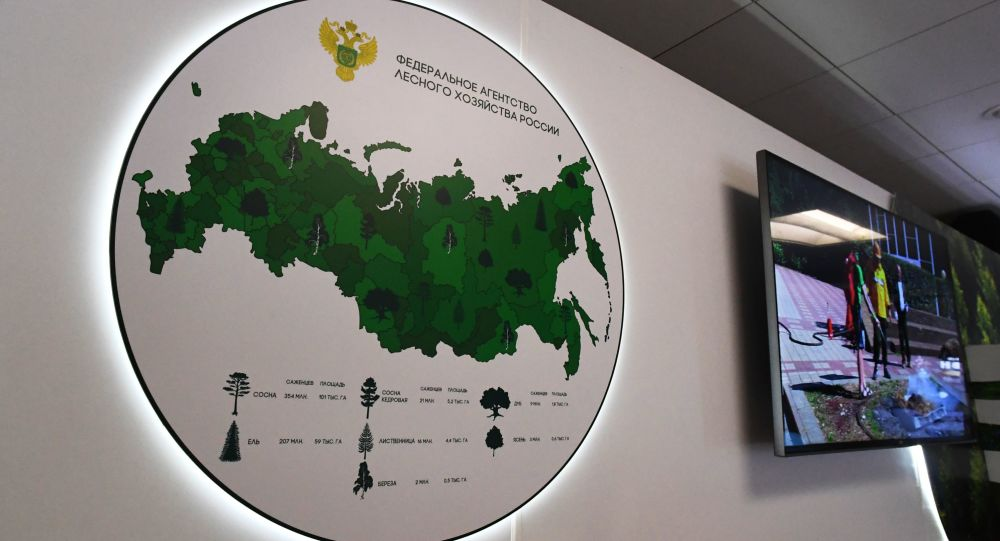 俄罗斯联邦林业局