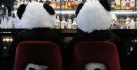 熊猫取代游客跟狗喘:德国餐馆被关闭