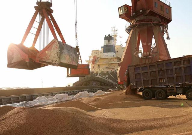 2021年中国将继续实施大豆振兴计划