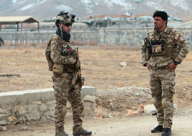 阿富汗安全部队
