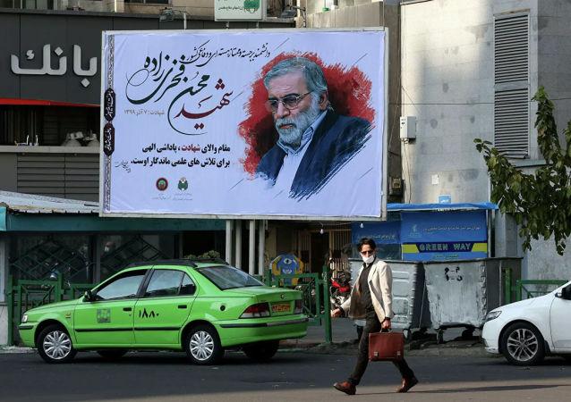 伊朗议长助理:伊朗核物理学家暗杀案的数名涉案人遭拘留