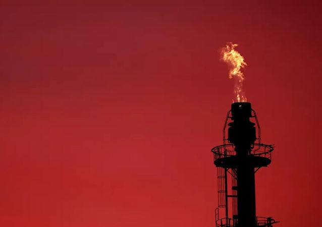 欧佩克+未就今年2月原油生产水平达成共识 大多数反对增产