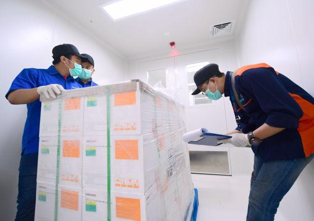 第一批中国新冠病毒疫苗将于30日交付土耳其