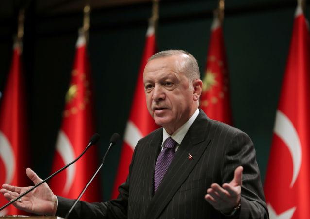 土耳其总理埃尔多安