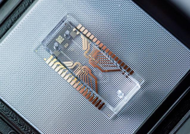 俄学者认为植入芯片将在5-10年后同药物竞争