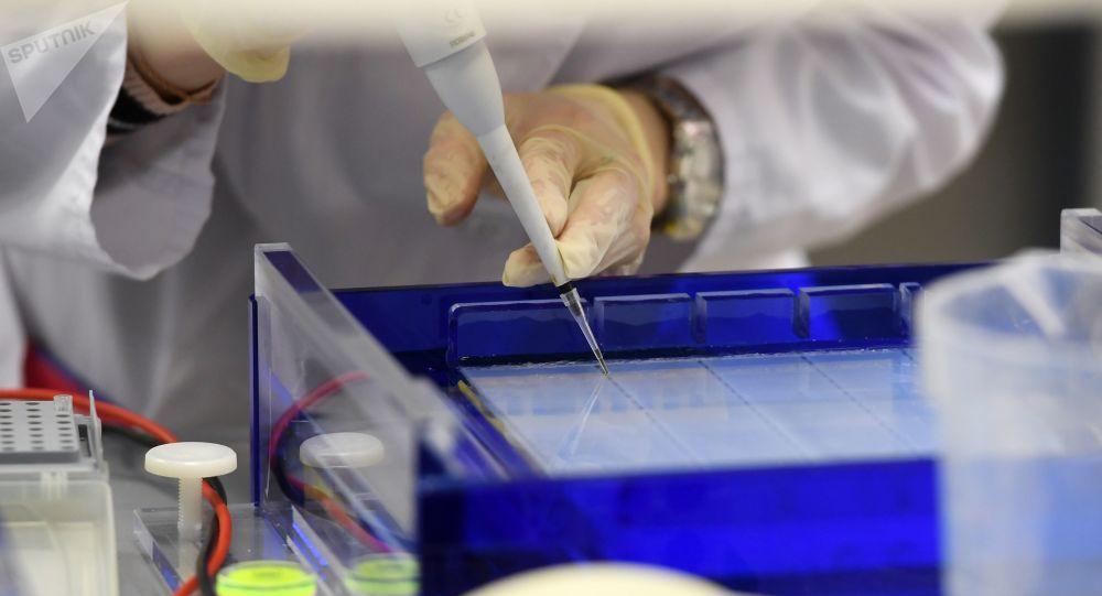 科学家发现冠状病毒传染的五种类型