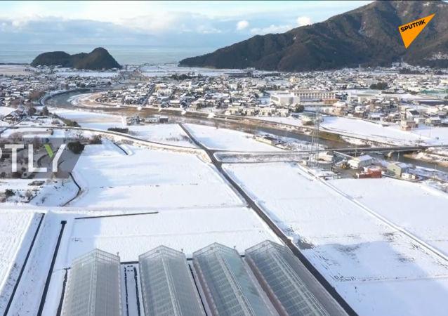 日本福井县大雪围城