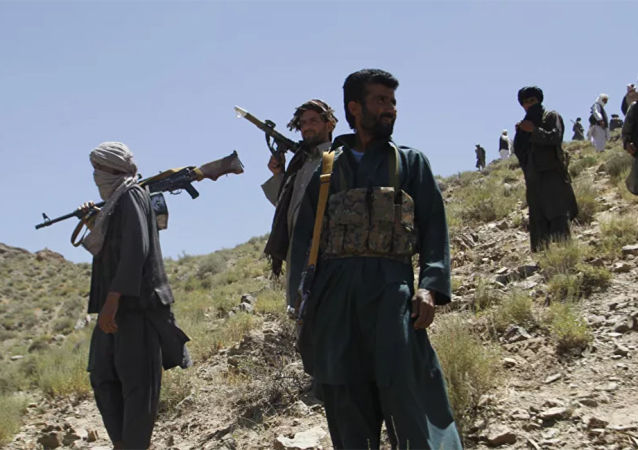 消息人士:塔利班袭击阿富汗军队岗哨 9名军人死亡