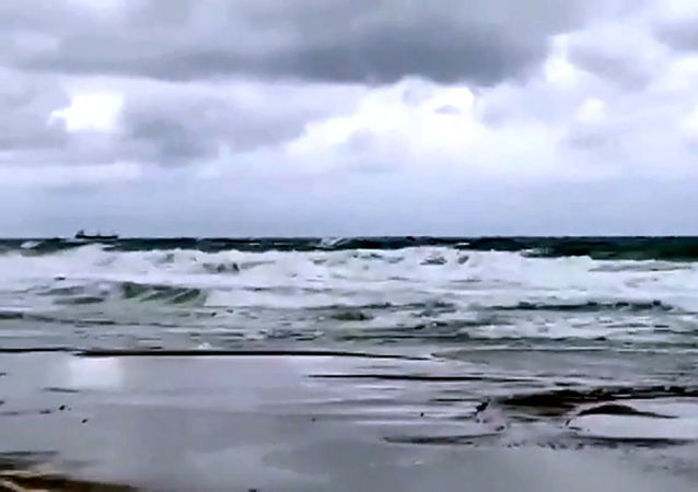 Arvin号干货船在土耳其海域(视频帧)