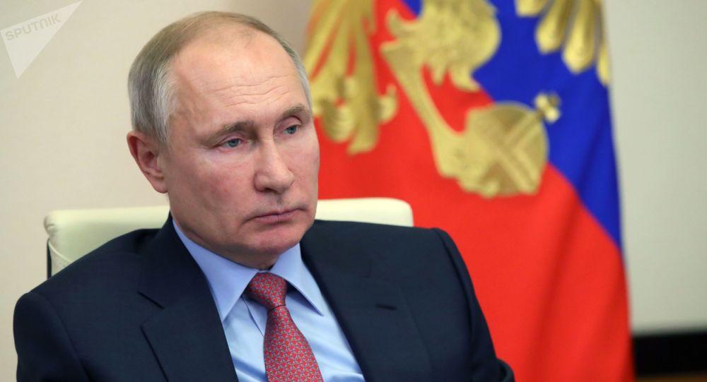普京评估2020年经济形势
