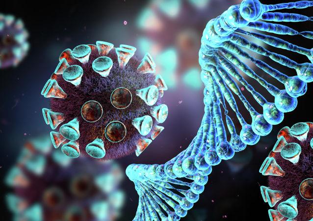 冠状病毒模型