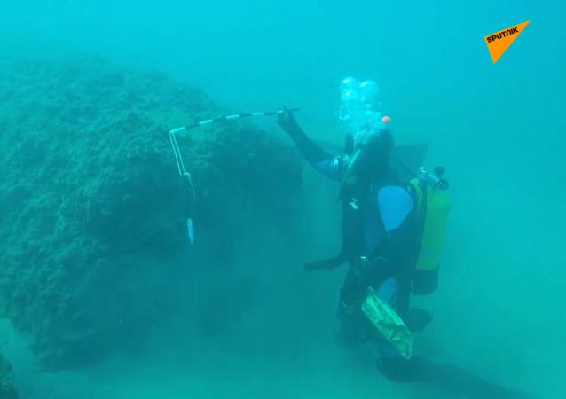 俄罗斯考古学家在塔尔图斯发现了古港遗址