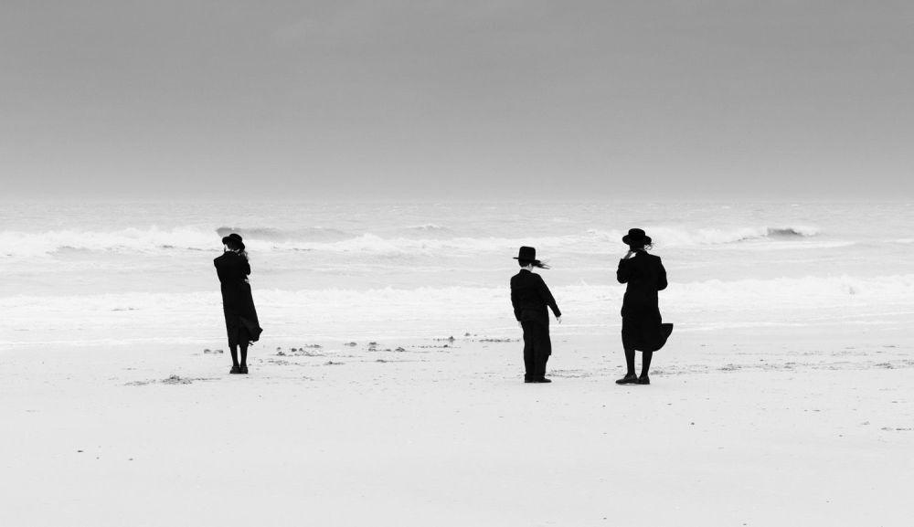 比利时摄影师艾迪·维洛斯的作品。