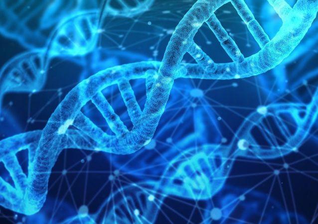 """加拿大科学家在""""活化石""""矛尾鱼体内发现进化基因"""