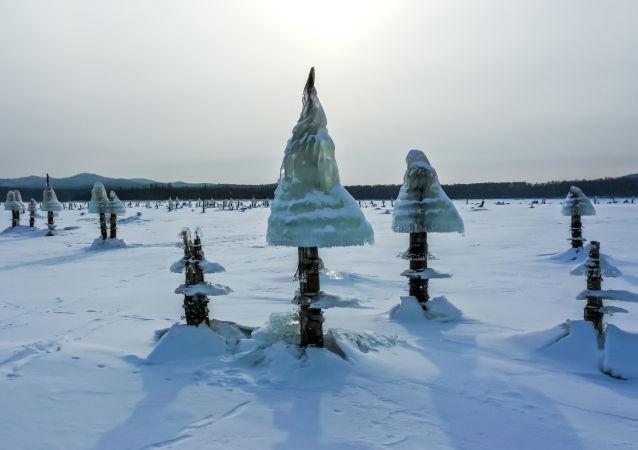 布列水电站是俄罗斯远东地区最大的水电站。当水电站每次开闸排水后,库区水位会快速下降。