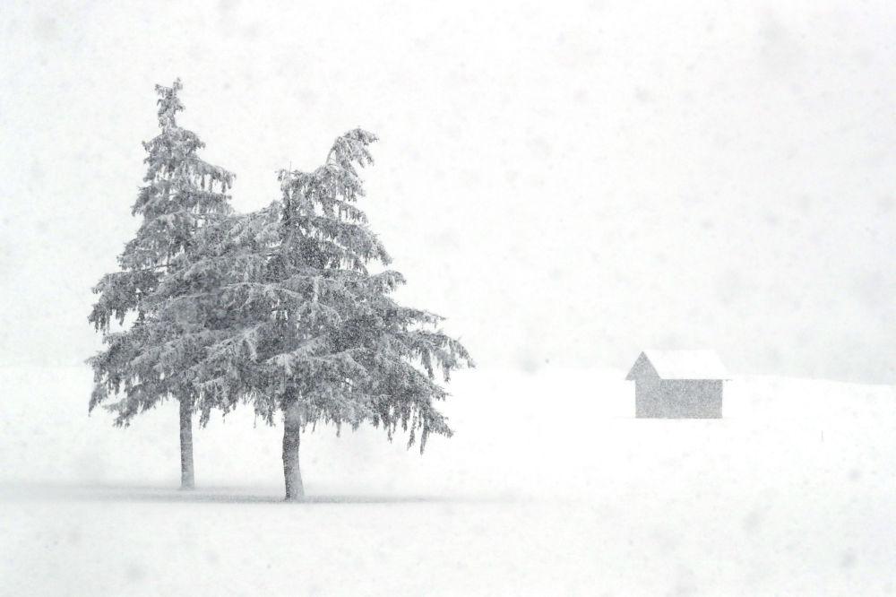 意大利南蒂罗尔州雪景。