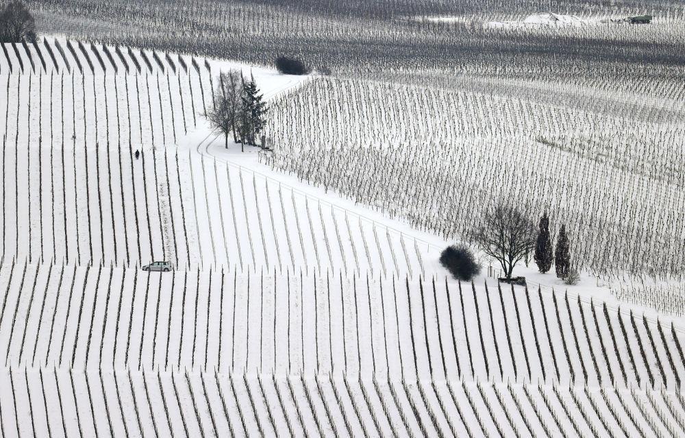 雪后的德国葡萄园。