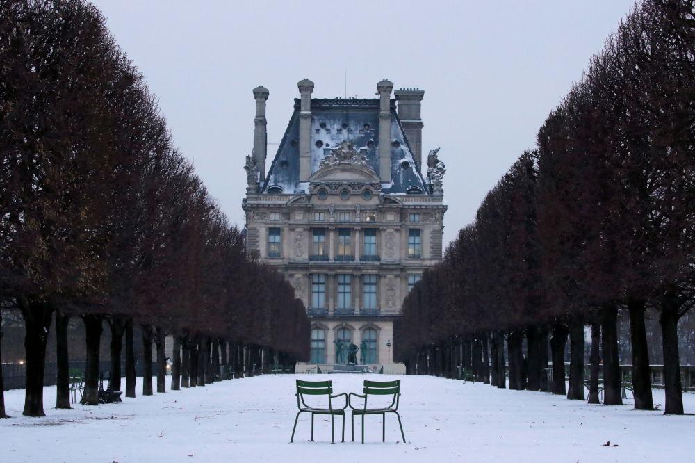 法国巴黎市杜乐丽花园雪中景色。