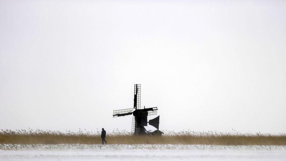 雪后的荷兰黑洛市风车。