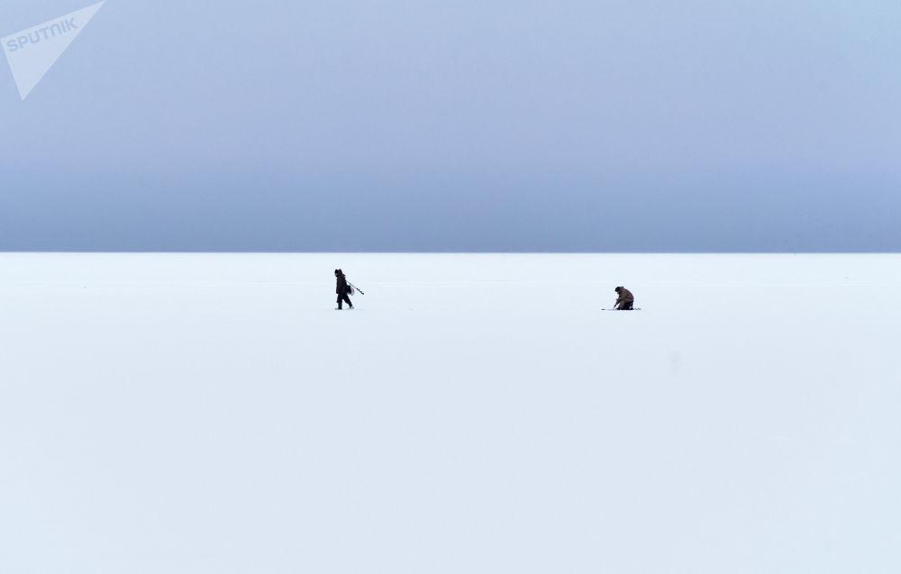 卡累利阿共和国居民在拉达湖冰面上冰钓。