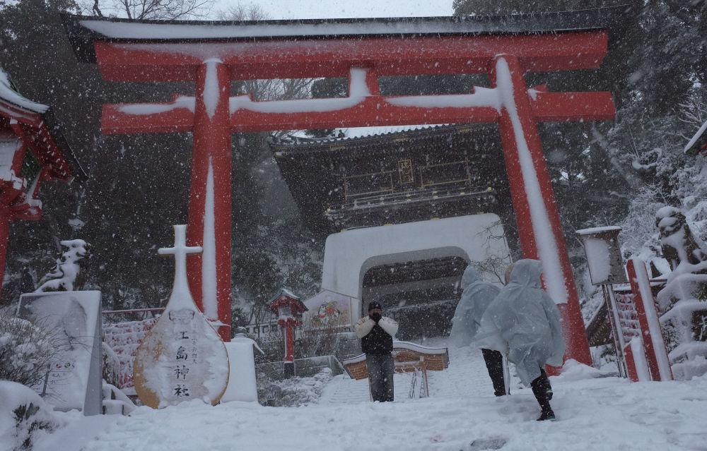2014年2月,东京13年来最严重降雪的后果。
