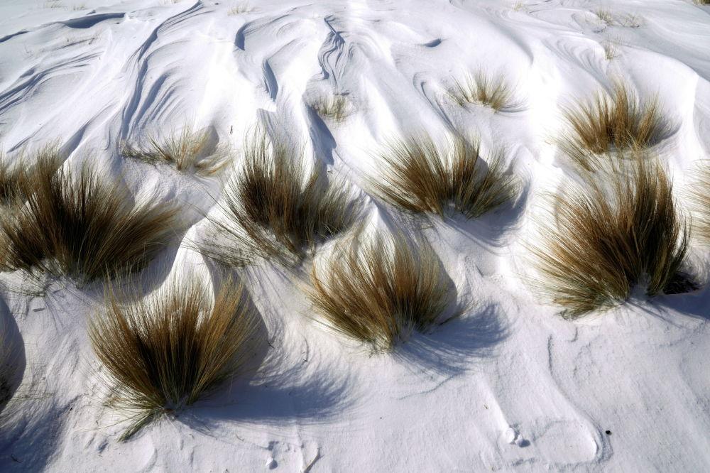 俄克拉荷马州俄克拉荷马市创纪录的寒冷天气里,公园草地上的雪。
