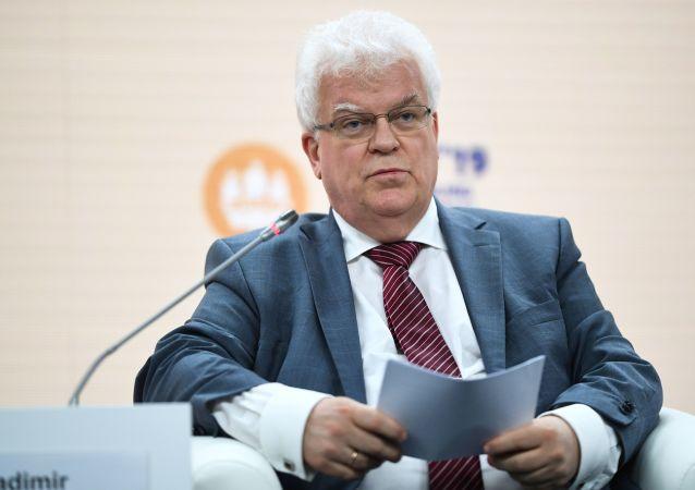 俄常驻欧盟代表弗拉基米尔•奇若夫