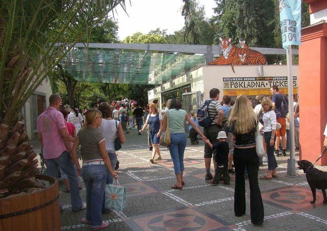 布拉格动物园的主要出入口