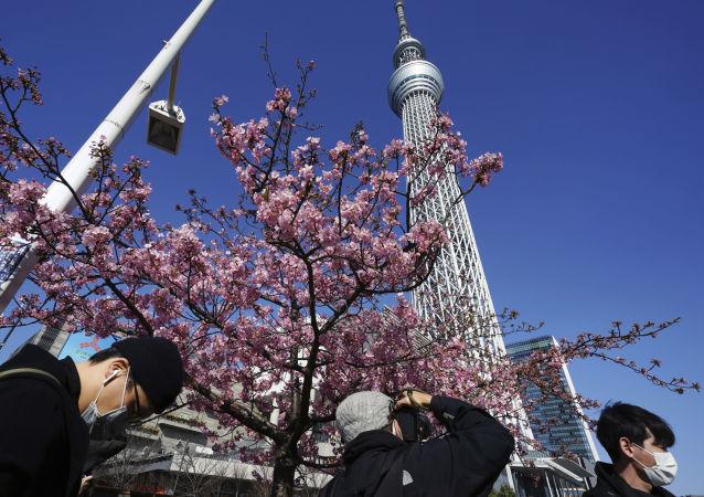 日本东京都知事因新冠病毒感染病例攀升请求政府加强措施
